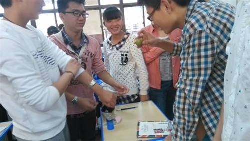 高一生物细胞模型制作